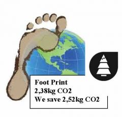 Foot print logo-2.jpg