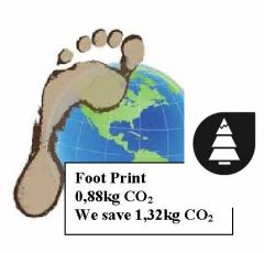 Foot Print logo sandy.jpg